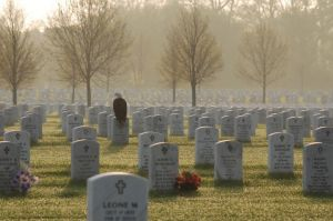 Fort Snelling National Cemetery.  (Photographed by Frank Glick, copyright 2011)